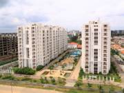 Picture of Adarsh Palm Retreat Condominiums - Phase 3