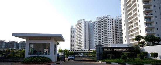 Picture of ELITA Promenade