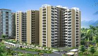 Picture of Sobha Classic