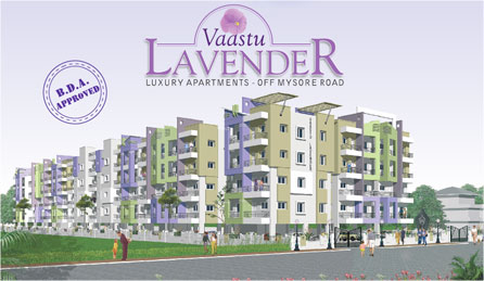 Picture of Vaastu Lavender